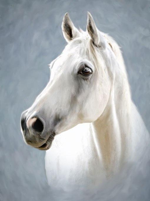 №0819, Бял кон. Картина с ефектен ръчен релефен финиш. Индивидуална изработка по поръчка.