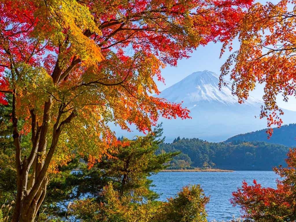 №1866, Есен край езерото. Фото-картина.