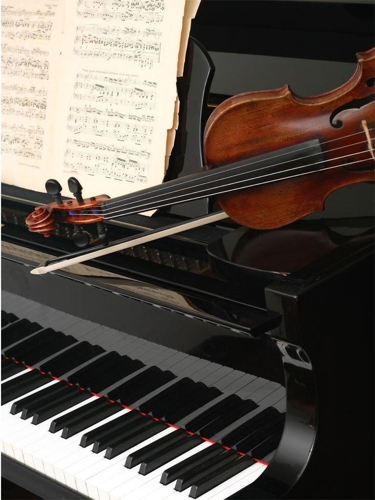 №1876, Красотата на музиката. Фото-картина.