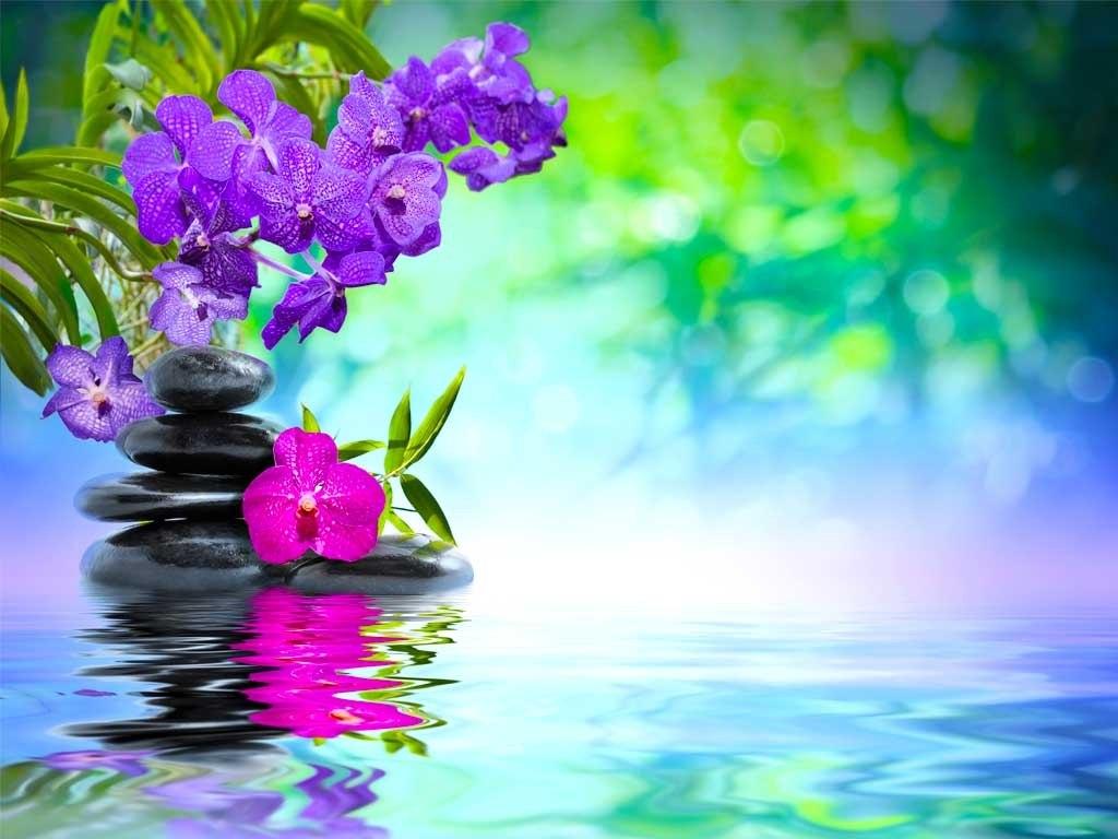 №1884, Хармония и цветя. Фото-картина.