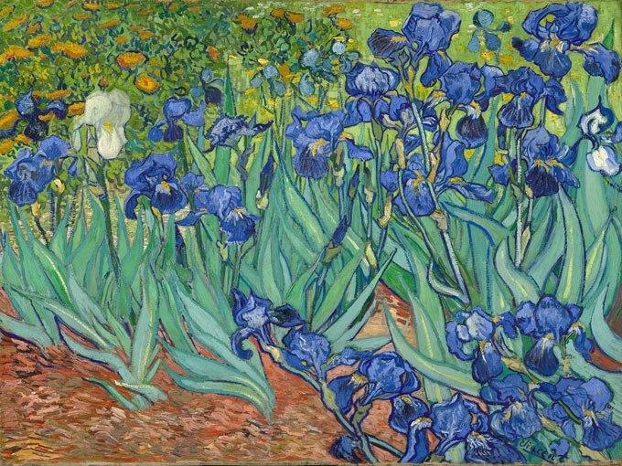 Ириси от Ван Гог. Картина - репродукция