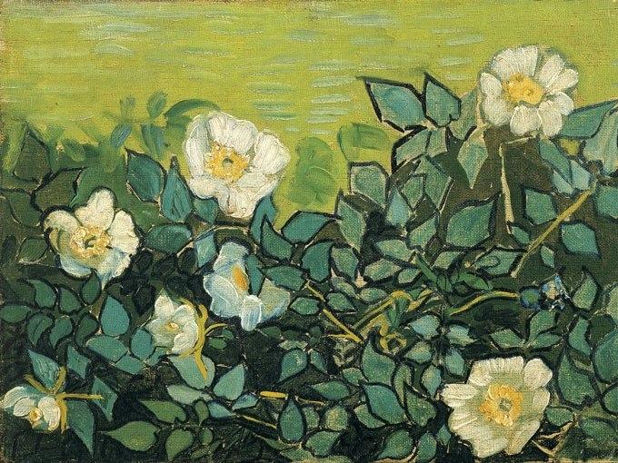 Диви рози от Ван Гог. Картина - репродукция